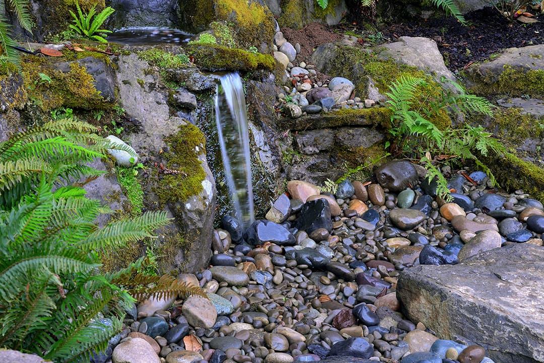 Example of Portland landscape design by Drake's 7 Dees