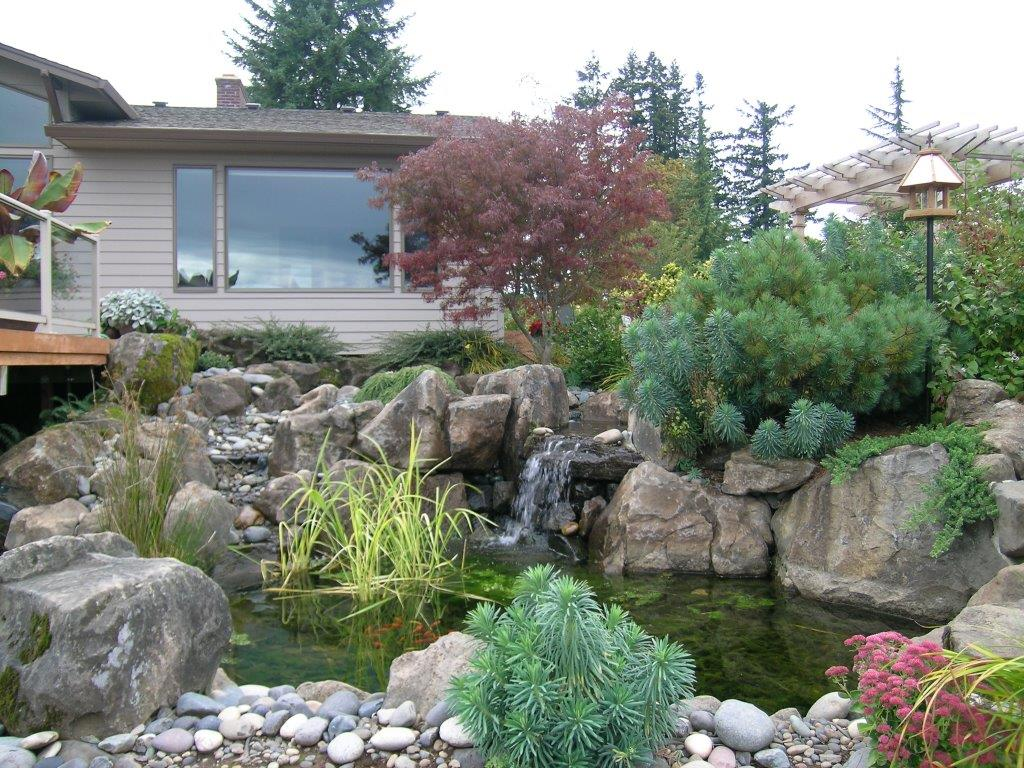 Image of a Cornelius Backyard Pond Design and Construction by Drake's 7 Dees